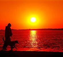 Man & Beast at Sunset II by DonnaM