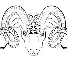 Longhorn sheep head sketch by gleolite