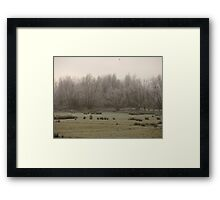 tree frost Framed Print