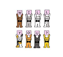 Will you? Cartoon Cats. Photographic Print