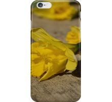 Spring in waiting iPhone Case/Skin