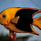 Yellow & Black Fish by Robert Case
