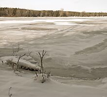 Frozen Lake: New Years Eve. by K W
