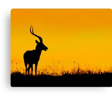 Orange Sunrise Early Morning Kenya Canvas Print