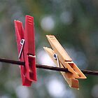 pegs by anaphylaxis