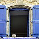 Open shutters by Arie Koene