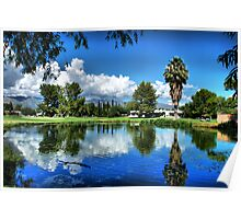 Pond Reflections Poster
