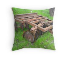 Showing It's Age Throw Pillow