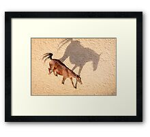 A Cappadocian Horse and its Shadow Framed Print