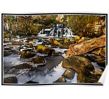 Cotter Force a different view Poster