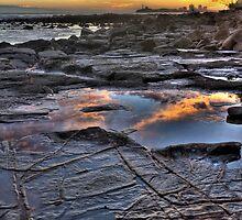 Rock Pool Reflections-0187 by Barbara Harris