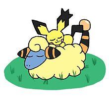 Pokemon - Pichu x Mareep by gaming123456