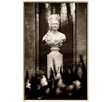 Victorian Lady Statue Bust Photographic Print