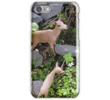 Deer Family in a shady Glade  iPhone Case/Skin