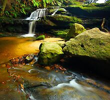 Leura Cascades - Blue Mountains  by Matthew Smith
