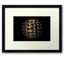 Twirly ball Framed Print