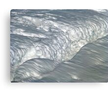 Lotta Snow Canvas Print