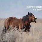 HAPPY BIRTHDAY MY LOVE  by Nicole  Markmann Nelson