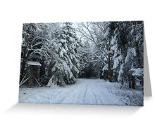 Winter scene Greeting Card