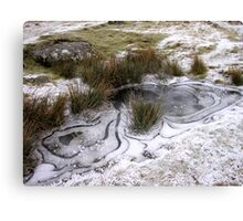 Ice Patterns Canvas Print