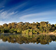 Sunrise Lake Daylesford by Victor Pugatschew