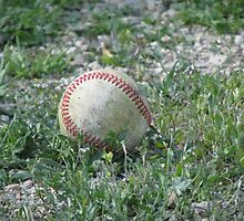 Baseball Lying in the Grass by Ingasi