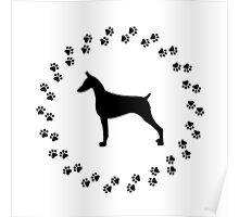 Doberman surrounded by paw prints. Poster