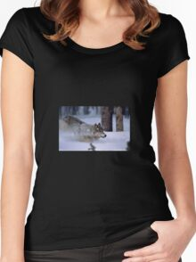 Wolf in snow Women's Fitted Scoop T-Shirt