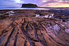Mudstone shelf towards The Nut by Garth Smith