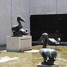 bronze pelicans  by jack01