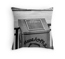 Traveling the River Throw Pillow