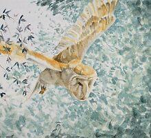 Barn Owl in Flight by JustAlison