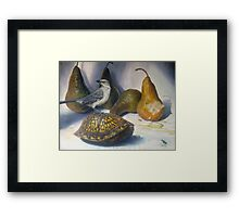 Mockingbird and the Box-turtle ( with tiger beetle) Framed Print