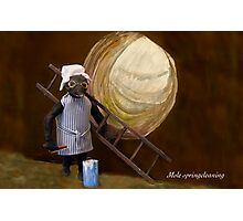 Wind in the Willows - Mole spring cleaning Photographic Print