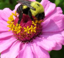Bizzy Bumble Bee Sticker