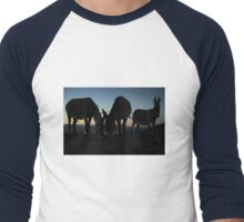 Burros of the High Desert Men's Baseball ¾ T-Shirt
