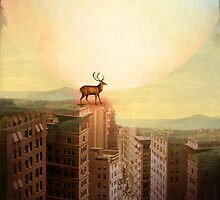 Deer at Dawn by Catrin Welz-Stein