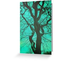 Trees - 30 Greeting Card