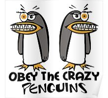 Obey The Crazy Penguins  Poster