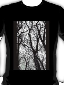 """Bare Naked Trees in Winter"" T-Shirt"