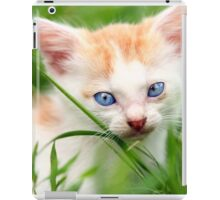 Adorable kitty in grass iPad Case/Skin