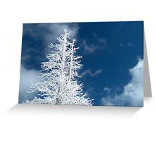 Snow Dust Greeting Card