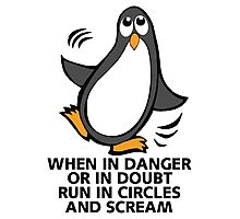 When in Danger or in Doubt Funny Penguin  Photographic Print