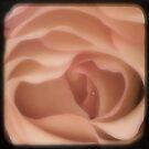 SYMBOL OF LOVE - Unfold by Vanessa Sam