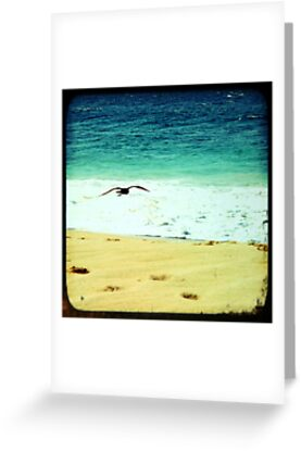 BEACH BLISS - Soaring by Vanessa Sam