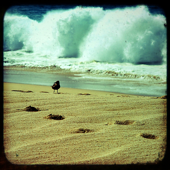 Stormy beach photography print, Los Cabos Mexico travel photography, green ocean waves footprints in the sand TTV by moderatefanatic