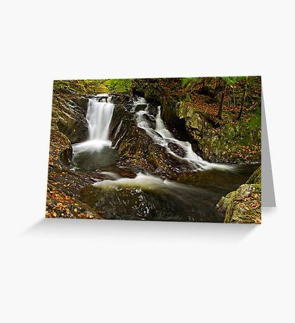 Falls Along Waterman Brook Greeting Card