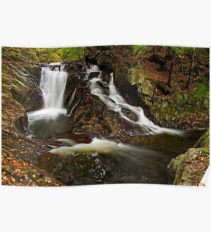 Falls Along Waterman Brook Poster