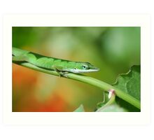 Anole Green Art Print