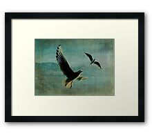 Wings over the World Framed Print